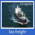 الشركة الدولية للشحن من الصين الى دولة الامارات العربية المتحدة( u. a. e.)---------------- اليزابيث
