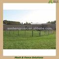 Temporal de esgrima ganadería( sgs fábrica)