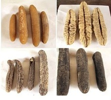 dried sea cucumber/beche-de-mer
