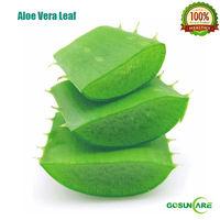 Price of Aloe Vera Leaf