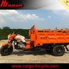 250cc atv /motor tricycle/three wheel tricycle