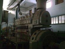 Diesel Generator 11D100