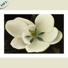 Magnolia denudata Floral oil painting