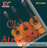Nylon guitar strings,double neck guitar