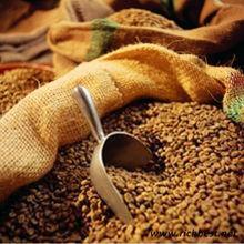 importer of jute bag