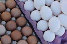 Table Eggs