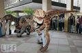 2013 de moda traje de dinosaurio