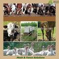Cheap tecido de fio de esgrima fazenda projetos para deer/ovinos/cabra/cavalo/gado( sgs fábrica)