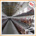 mejor venta de productos tuv certificado de mamufacture de fábrica de la granja de aves de corral de alimentación de pollo battary de alambre de acero de aves de jaula de trampa