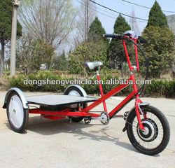 Flatbed Cargo Trike