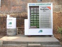 Hydro Fodder Farm