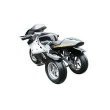 800w Electric Pocket Bike