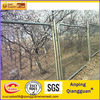 Best Selling Diamond wire mesh chain link fence