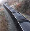 Steam Coal NCV4800-4600