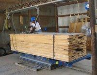 North American Yellow Poplar Timber Lumber