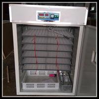 Popular 1000 chicken egg incubator hatching machine