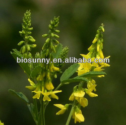 100% Natural Sweet Clover Plant Extract, Manufacturer supply, 5:1,10:1,20:1