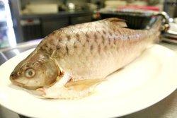 Live/Frozen Empurau Fish (Wang Bu Liao)