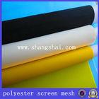 Fine Supplier DPP4T~165T Polyester Mesh For Plastic 100% Polyester