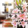 misto variedades tiger lily arranjo de flor artificial