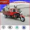 2013 Good Quality Hot 250CC Cheap Popular Cargo Three Wheel Motorcycle