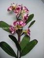 Decorativa papel de amoreira artesanal de flores