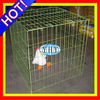 cage/bird cage/chicken cage/rabbit cage/dog cage/pet cage/quail cage/pigeons cages/poultry cage/hamster cage/parrot ISO9001:2000