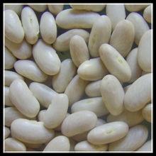 200 pcs/100g White Kidney Bean, Long Shape