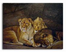 sleeping tigers 2013 new design animal oil painting