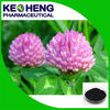 Genistein, Natural Red Clover Extract Isoflavones8%-40%