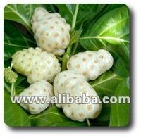 Tahitian Noni Fruit