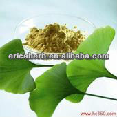 2013 good quality Natural ginkgo flavone glycosides terpene lactones on sale