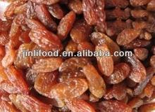 best price high quality sultana raisins red grades