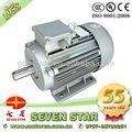 Motor do ventilador peugeot 206