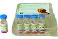 Melhor vacina anti-rábica para cães