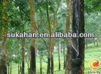 Organic Fertilizer for rubber tree