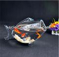 peces únicos de vidrio en forma de los tanques de peces