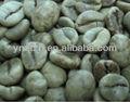 superbe yunnan de robusta café vert avec le prix concurrentiel