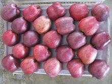 Wholesale fresh Huniu apple with good taste juicy and crisp apple fruit