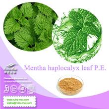 4:1,10:1,20:1;Menthol 1% to 8%& Mentha haplocalyx leaf P.E. // Mint extract