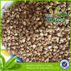 2013 China(mainland) buckwheat food kernel and buckwheat husk from china buy grain popuralr to sale