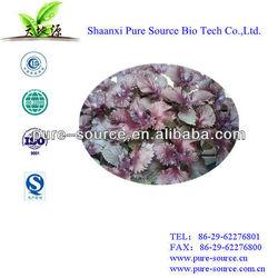 perilla extract extract ratio 10:1 TLC