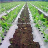 PE black/white perforated plastic mulch film with holes