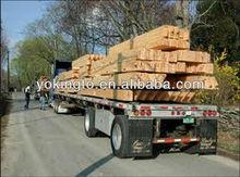 Paulownia, China cedar, poplar, SPF, pine lumber price