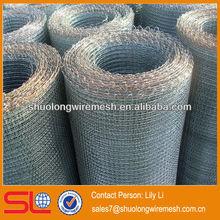 deckle edge galvanized square wire mesh/crimped wire mesh