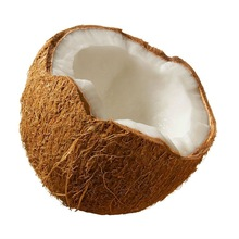 supply all about coconut