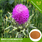 Silymarin & Milk Thistle Extract Powder