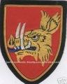 Medieval cruzadas terra knight javali escudo da guerra patch