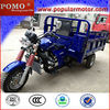 2013 Chinese Hot Popular Water Cool Gasoline Cheap Cargo 250cc Reverse Trike