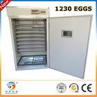 2013 New design fish egg incubator hatchery for selling ZYA-11
